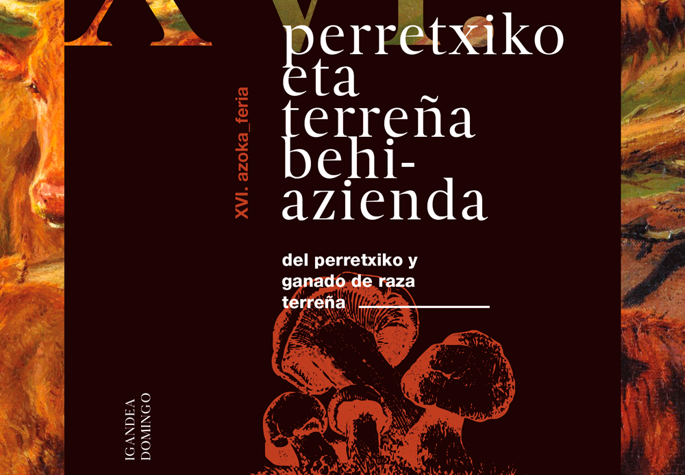 perretxiko_post